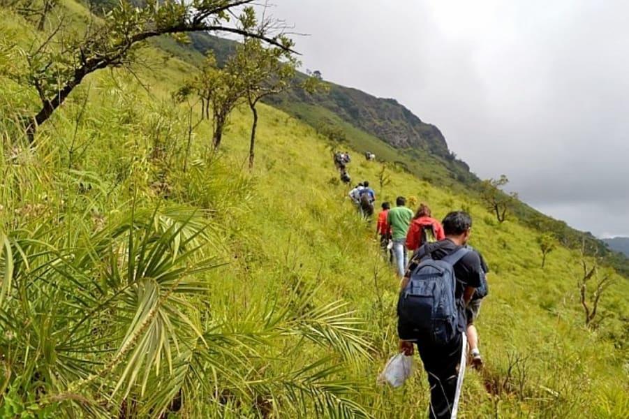 Mullayanagiri Trek Chikmagalur Image