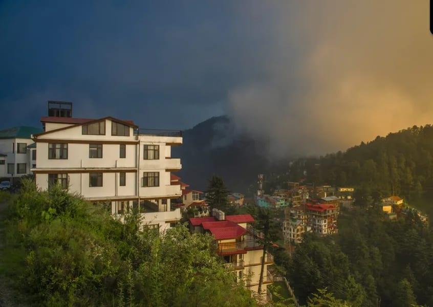 A Serene Homestay Amidst Pine Trees in Shimla Image
