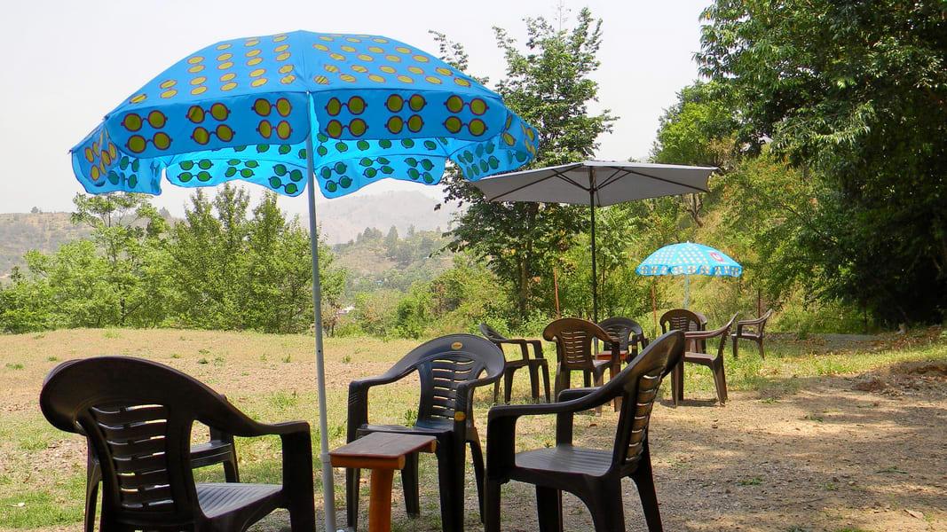 Nature Camping In Shimla Image
