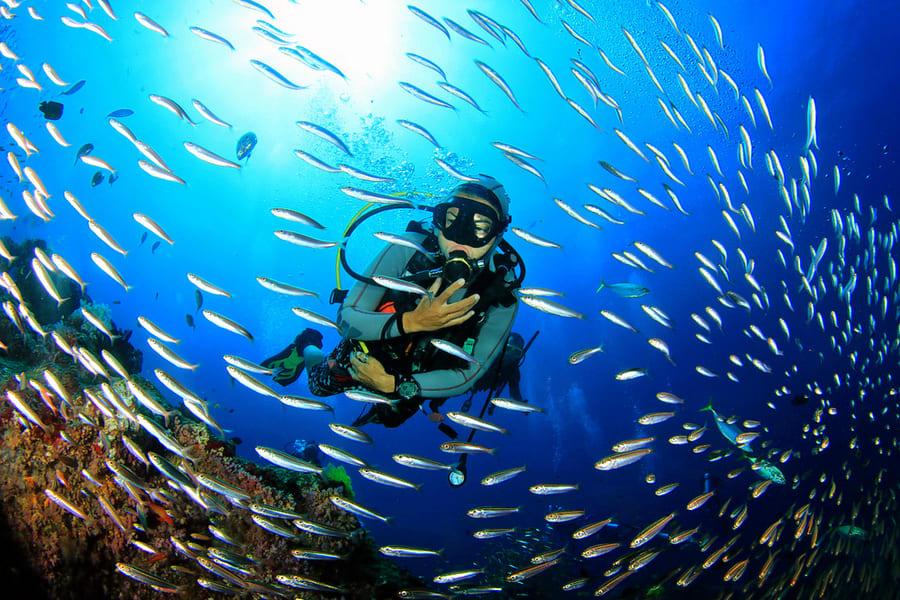 Grand Island Goa Scuba Diving Image
