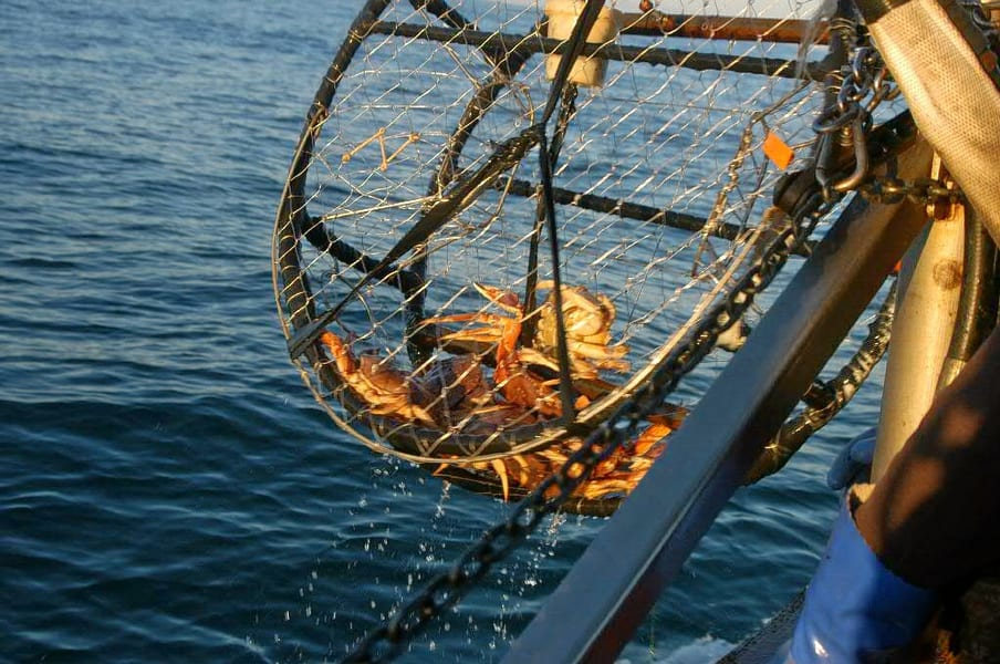 Fishing With Island Trip In Goa Image