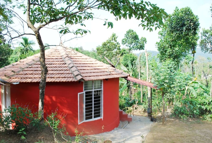 A Green Paradise in the Land of Coffee, Coorg Image