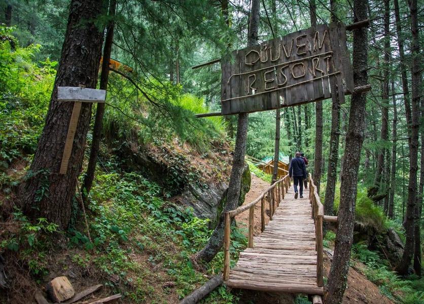 An Adventurous Tree House Near Shimla Image