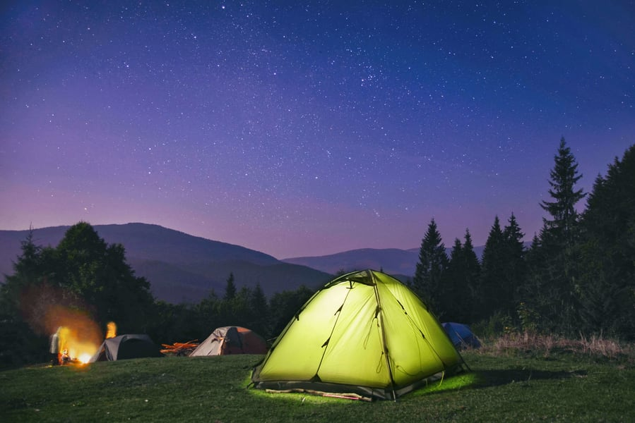 Camping By Tea Gardens Ooty Image