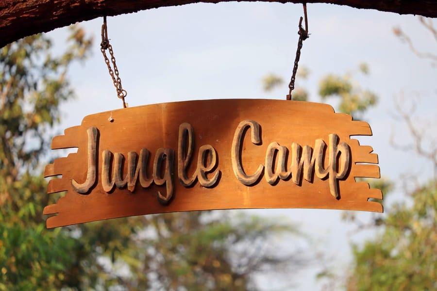 Nallamalai Jungle Camp Image