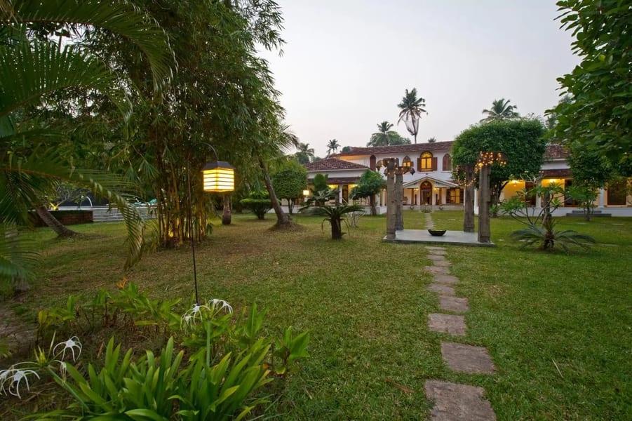Purity at Lake Vembanad Image