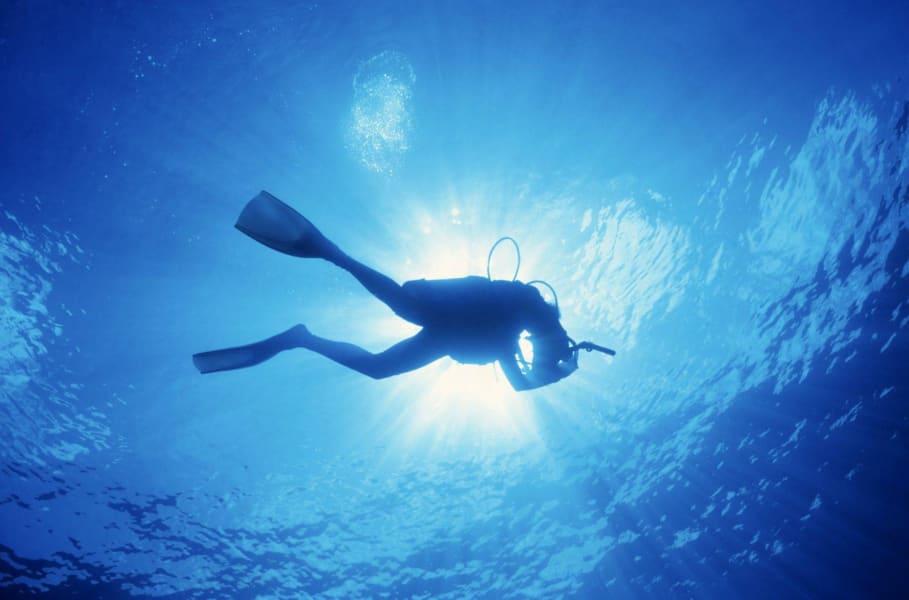 Scuba Diving in Malvan Image