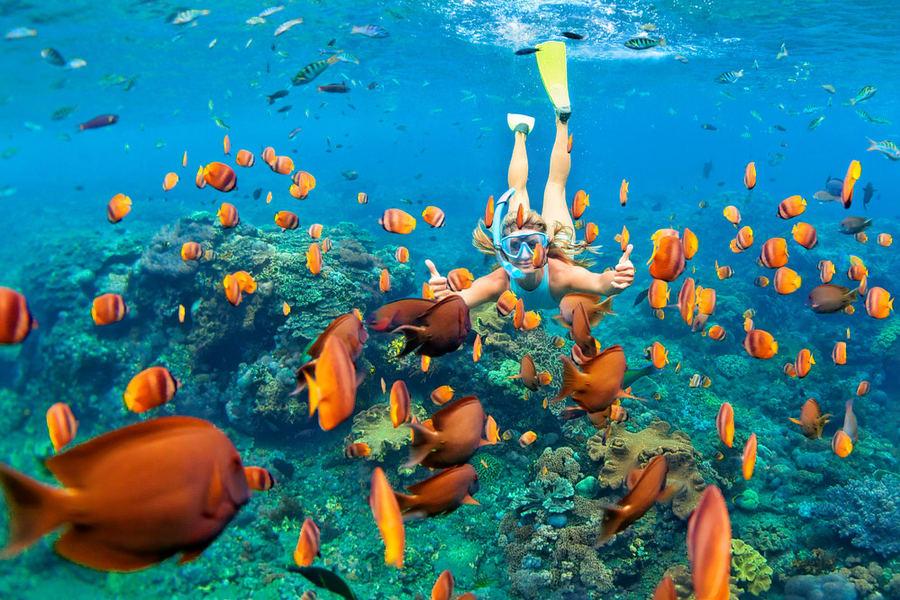 Maldives Package From Chennai Image