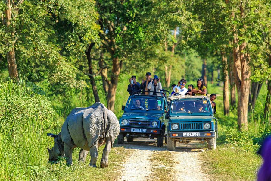 Jeep Safari In Kaziranga Image