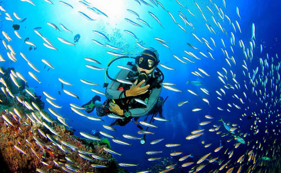 Scuba Diving In Chennai Image