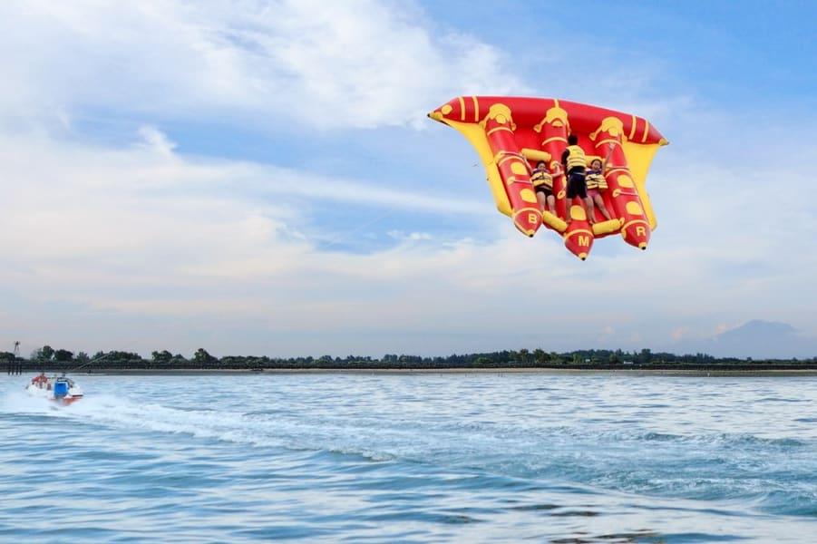Flying Fish In Bali Image