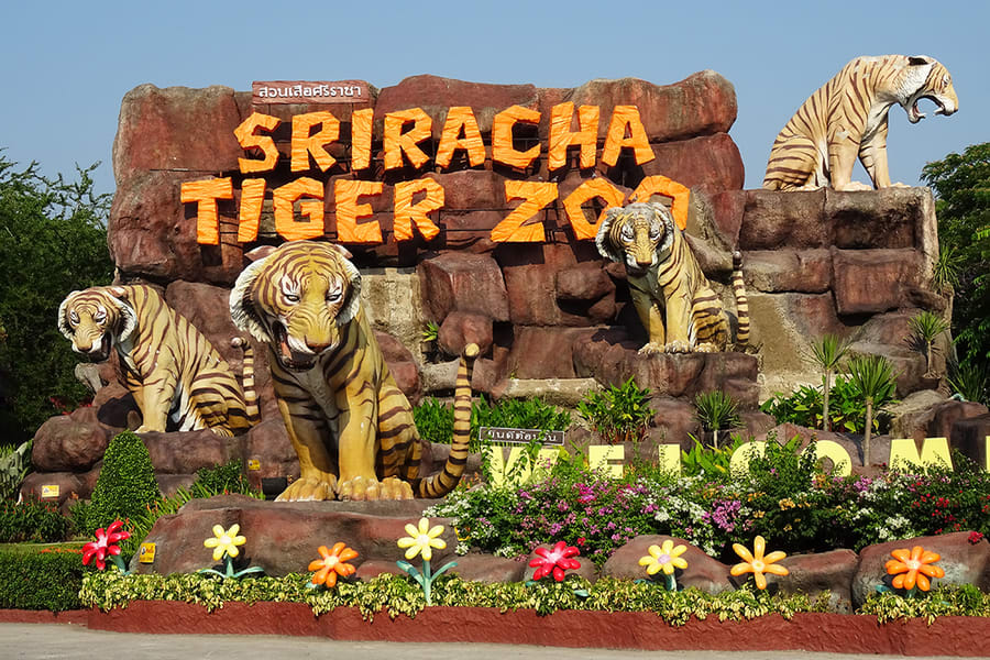 Sriracha Tiger Zoo Pattaya Tickets Image