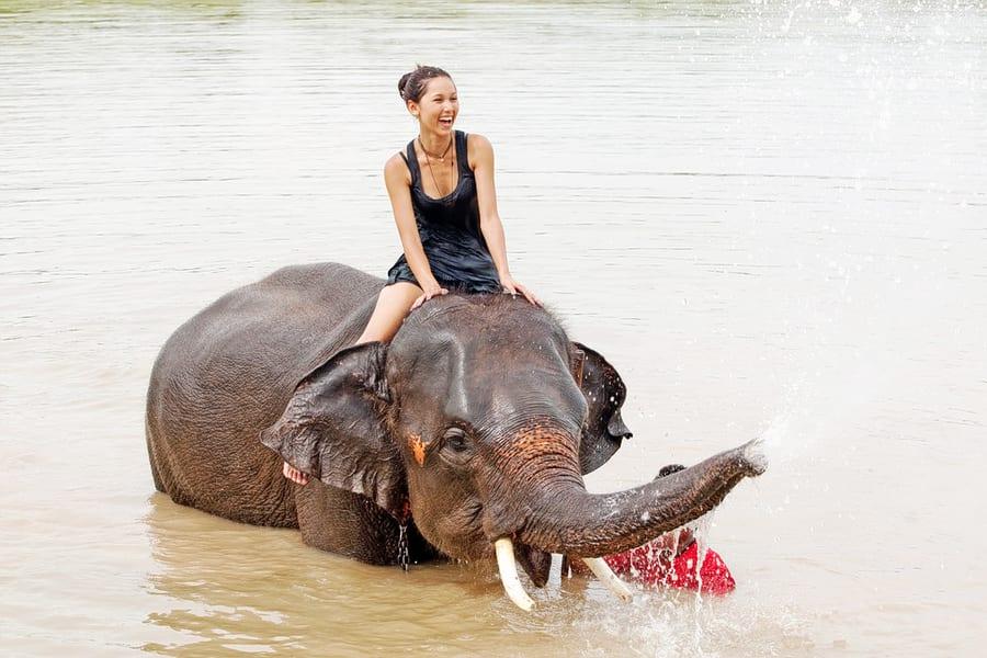 Exciting Elephant Safari Ride in Bali Image