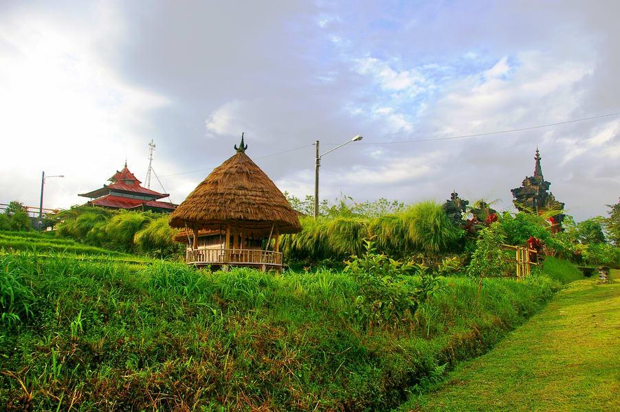 Ubud & Kintamani Tour Image