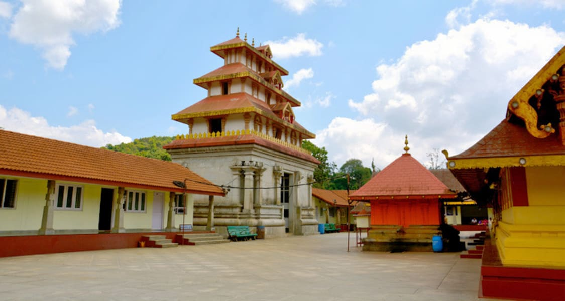 Coorg One Day Sightseeing Package Image