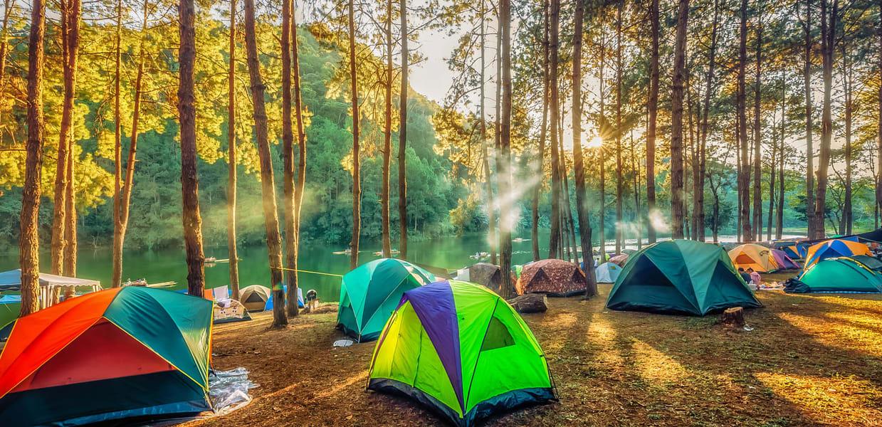 Camping in Yelagiri Image