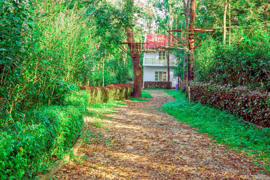 The Blossom Resort Chikmagalur Image