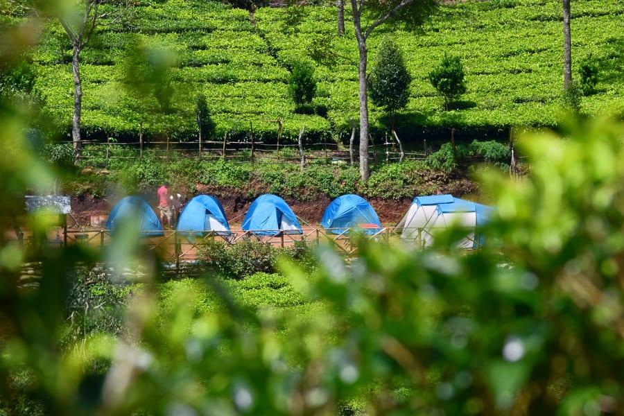 Suryanelli Camping Image