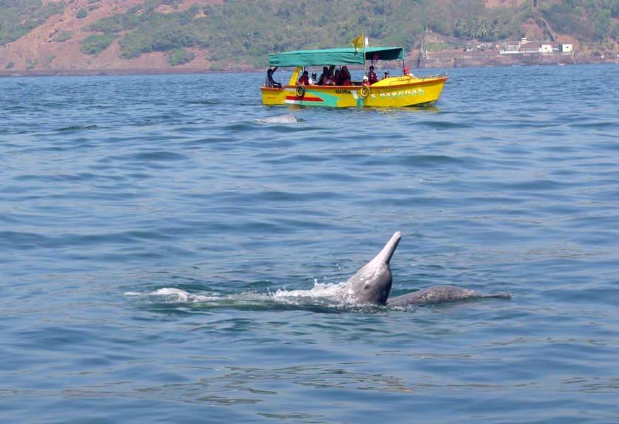 Castaway Cruise In Goa Image