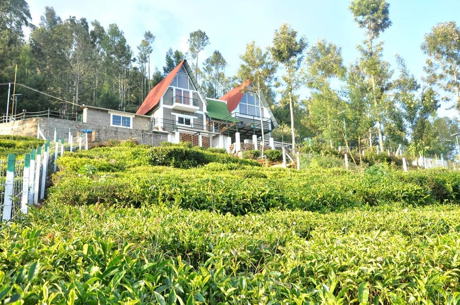 A Boutique Stay Tucked Amidst Tea Plantations of Kotagiri Image