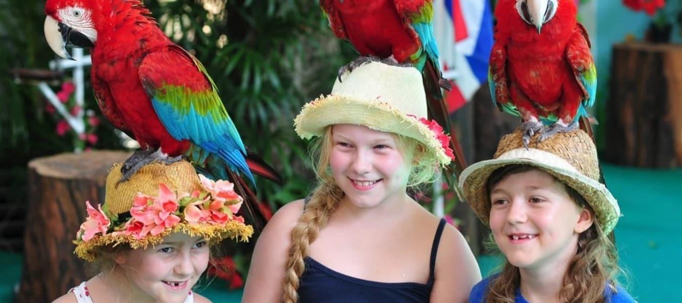 Phuket Bird Park Tickets Image
