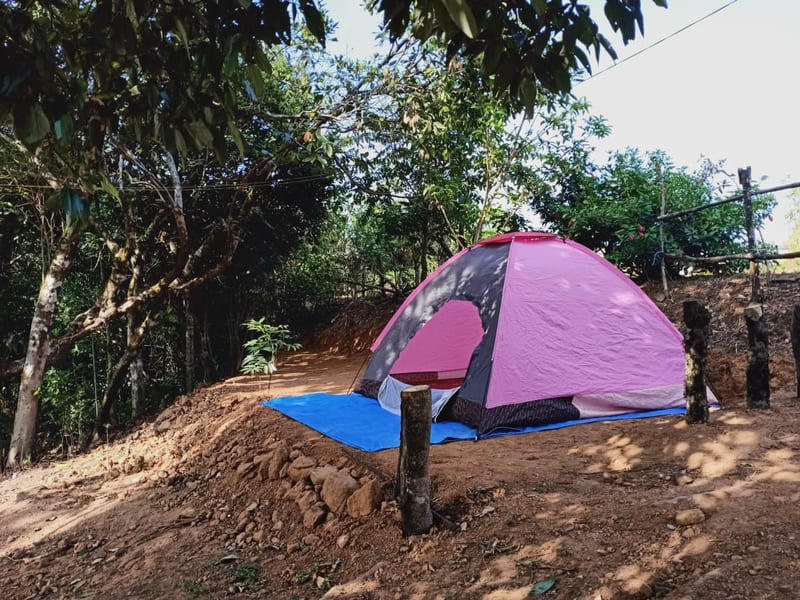 Camping in Sakleshpur Image