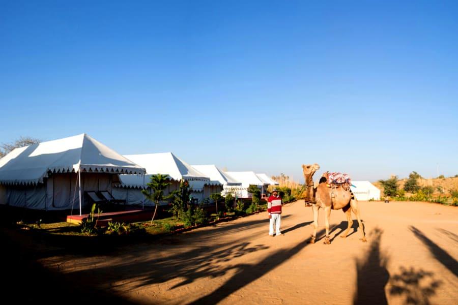 Camping With Camel Safari In Pushkar Image