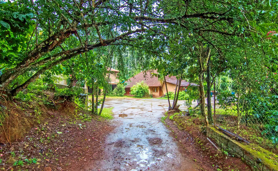 A Thrilling Escape into the Scenic Beauty of Coorg Image