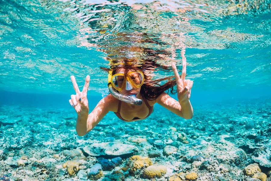 Snorkeling In Goa  Image
