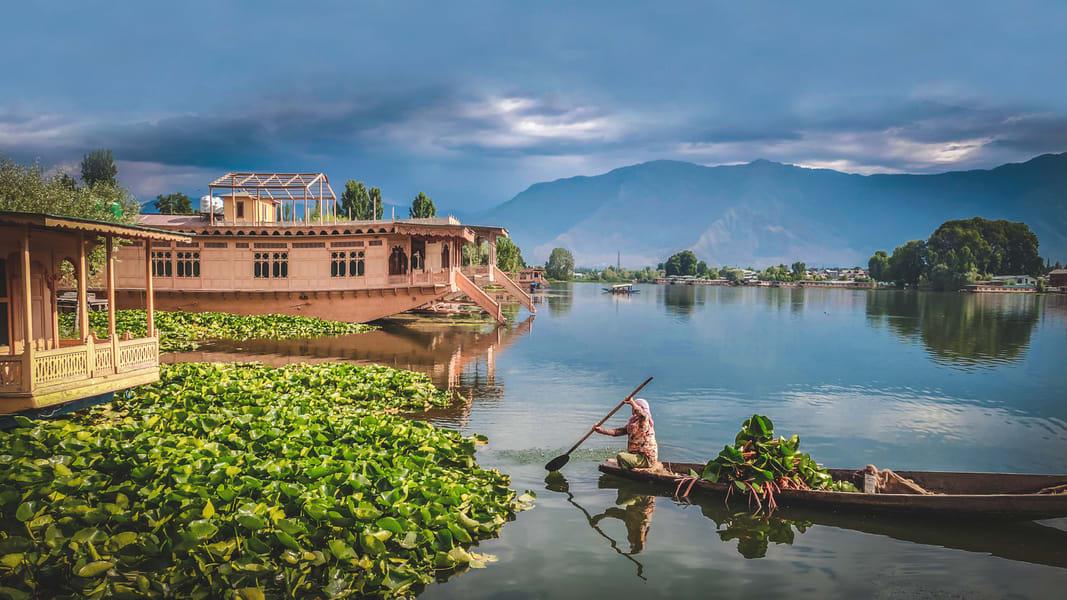 Offbeat Houseboat Stay In Srinagar Image