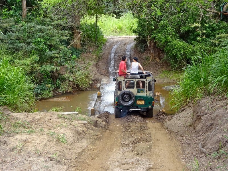 Dandeli Jungle Safari Image