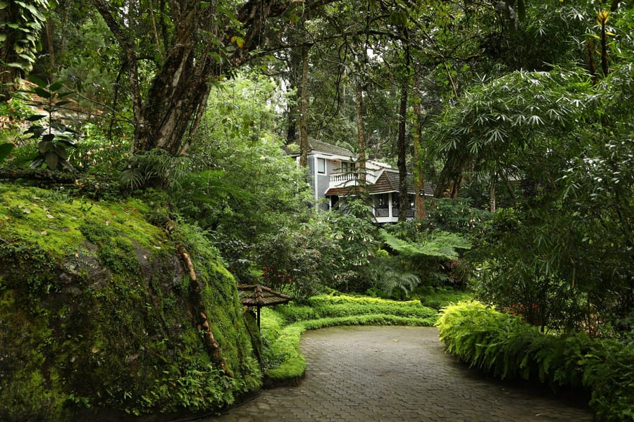 Tea Plantation Stay In Munnar Image