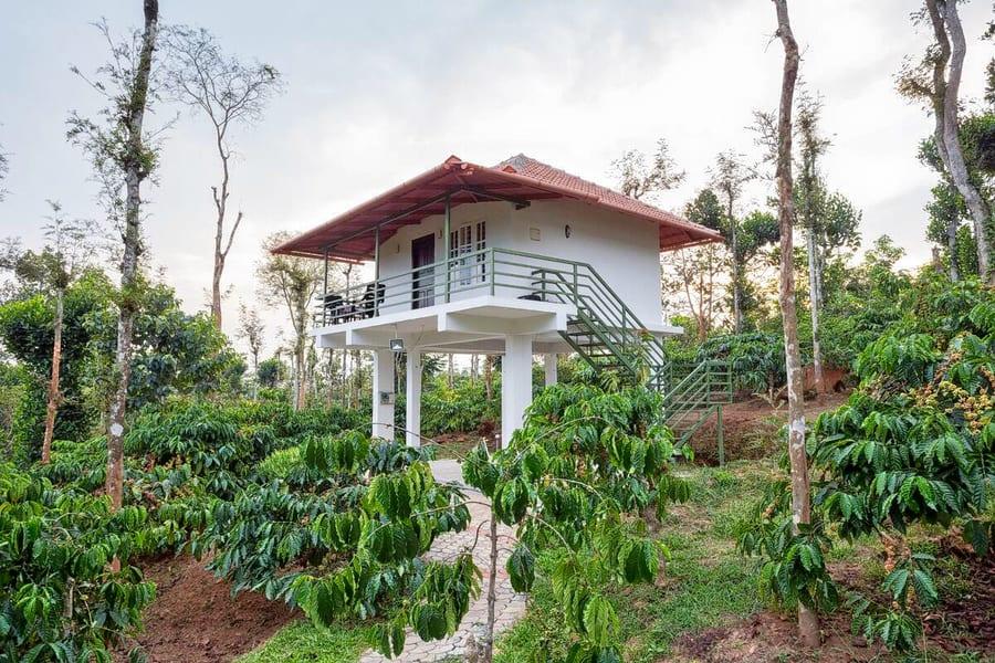 A Villa Stay Amidst Vast Coffee Plantations of Wayanad Image