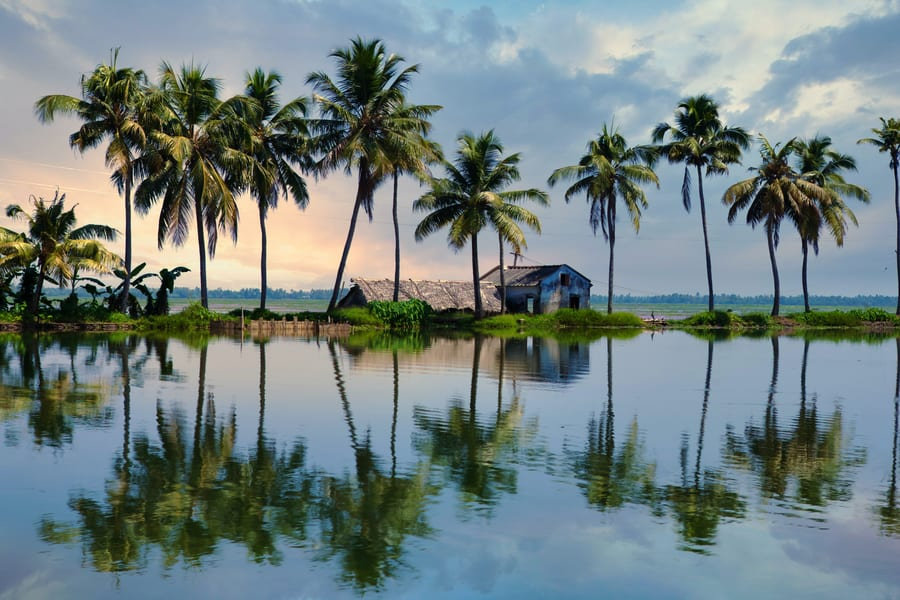 Wayanad Tour Package from Chennai Image