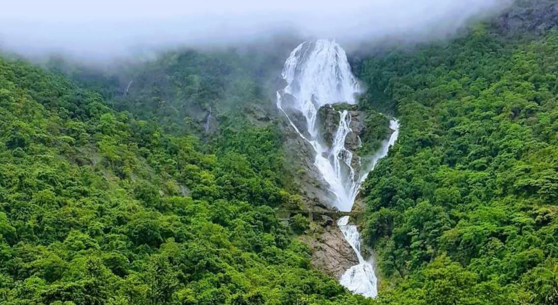Dudhsagar Falls and Spice Plantation Tour Image