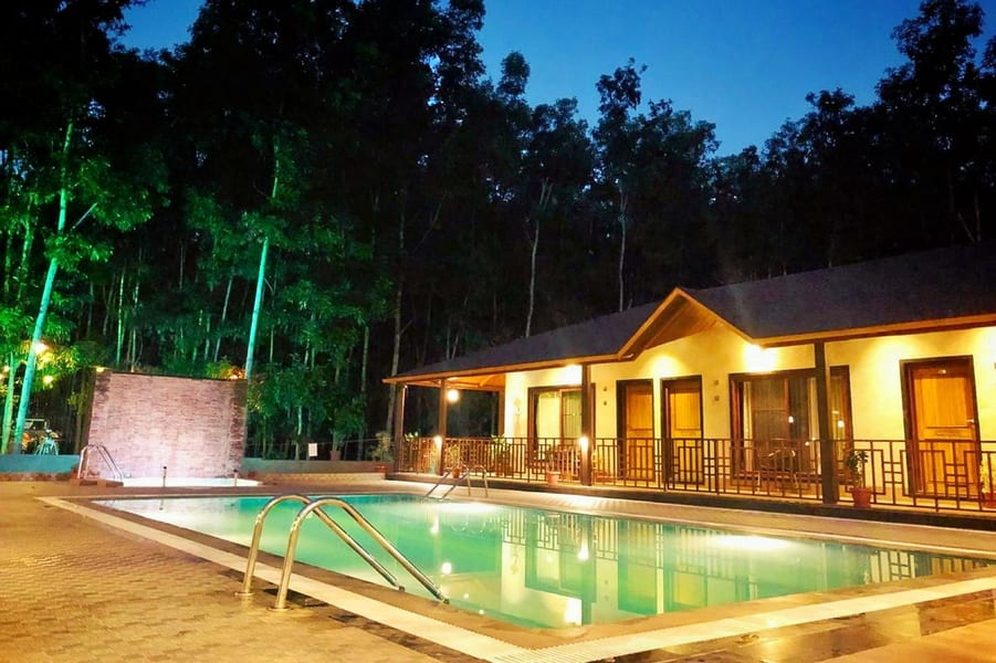 Stay Experience by Acacia Forest: An Escape into the Woods Image
