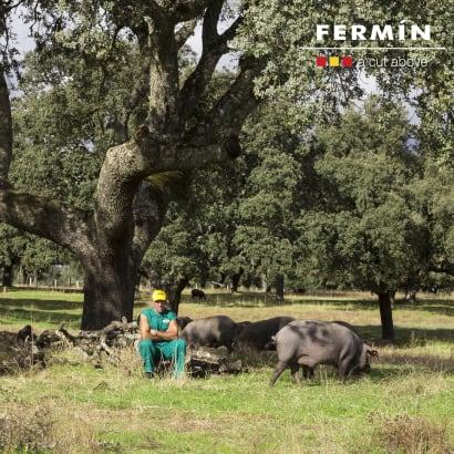 Reserva Jamón Ibérico de Bellota Ham by Fermín - FREE SHIPPING!