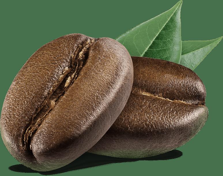 coffee bean | Trabajamos directamente con pequeños y medianos caficultores de CAFÉS ESPECIALES en muchas regiones de Colombia. Cada mes, te traemos lo mejor