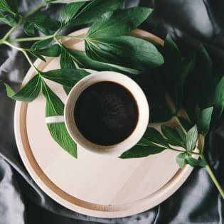 gallery 02 | Tierraviva está hecho de sonrisas. Nos mueve la idea de que los cafés especiales son un vehículo de felicidad; desde nuestros caficultores quienes reciben remuneración justa, hasta nuestros consumidores quienes disfrutan tazas increíbles
