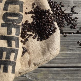 gallery 01 | Tierraviva está hecho de sonrisas. Nos mueve la idea de que los cafés especiales son un vehículo de felicidad; desde nuestros caficultores quienes reciben remuneración justa, hasta nuestros consumidores quienes disfrutan tazas increíbles