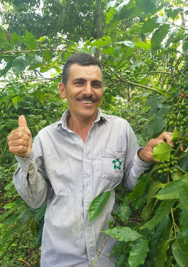 Risaralda 1   Café exótico de Colombia Origen: Finca La Ramada - Risaralda Altura: 1.240 msnm Perfil de taza: Cacao, avellanas tostadas