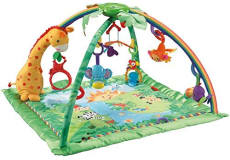 Fisherprice baby gym