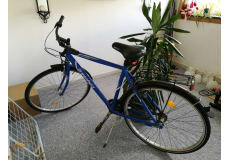cykel herre