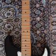Fender Standard Stratocaster (Mex.) + Mono Vertigo Gigbag