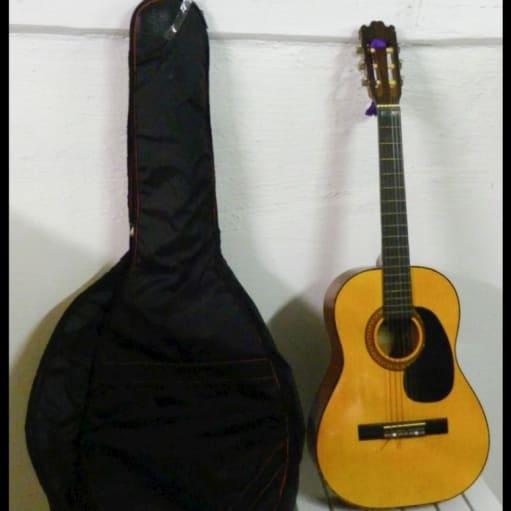 Harmony Guitar
