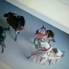 ridder heste
