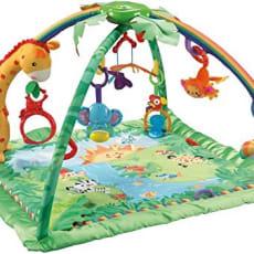 Fisherprice baby gym