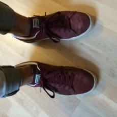 Puma Suede sko røde