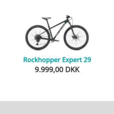 Specialized rock hopper Expert 29