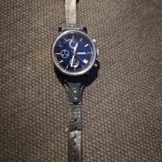 Fossil blåt ur